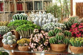 Plantas Artificiais